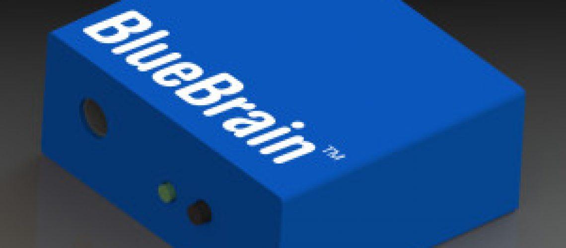 Bluebrain_wwlogo_3-300x243